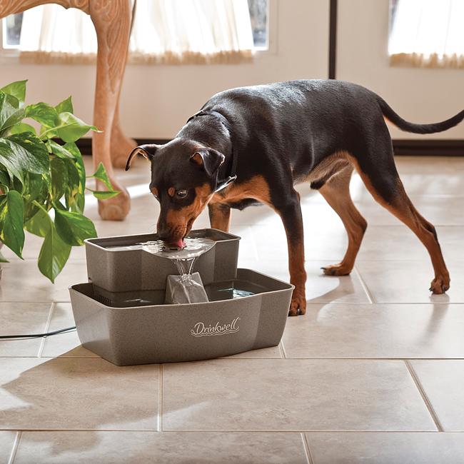 Drinkwell 174 Multi Tier Pet Fountain By Petsafe Dmlr Plas
