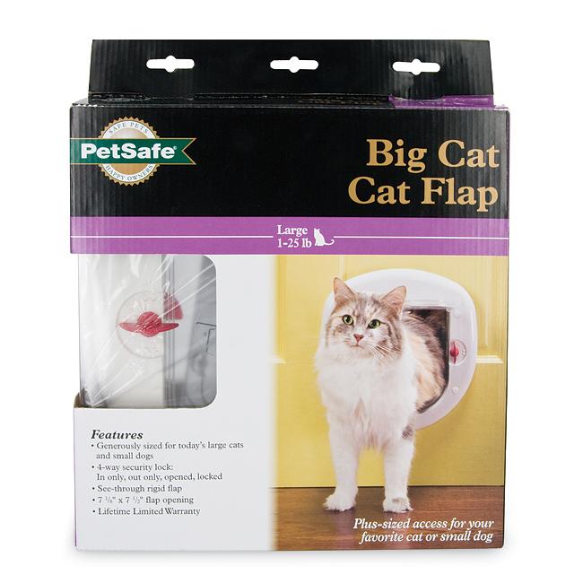 With you chubby cat pet door