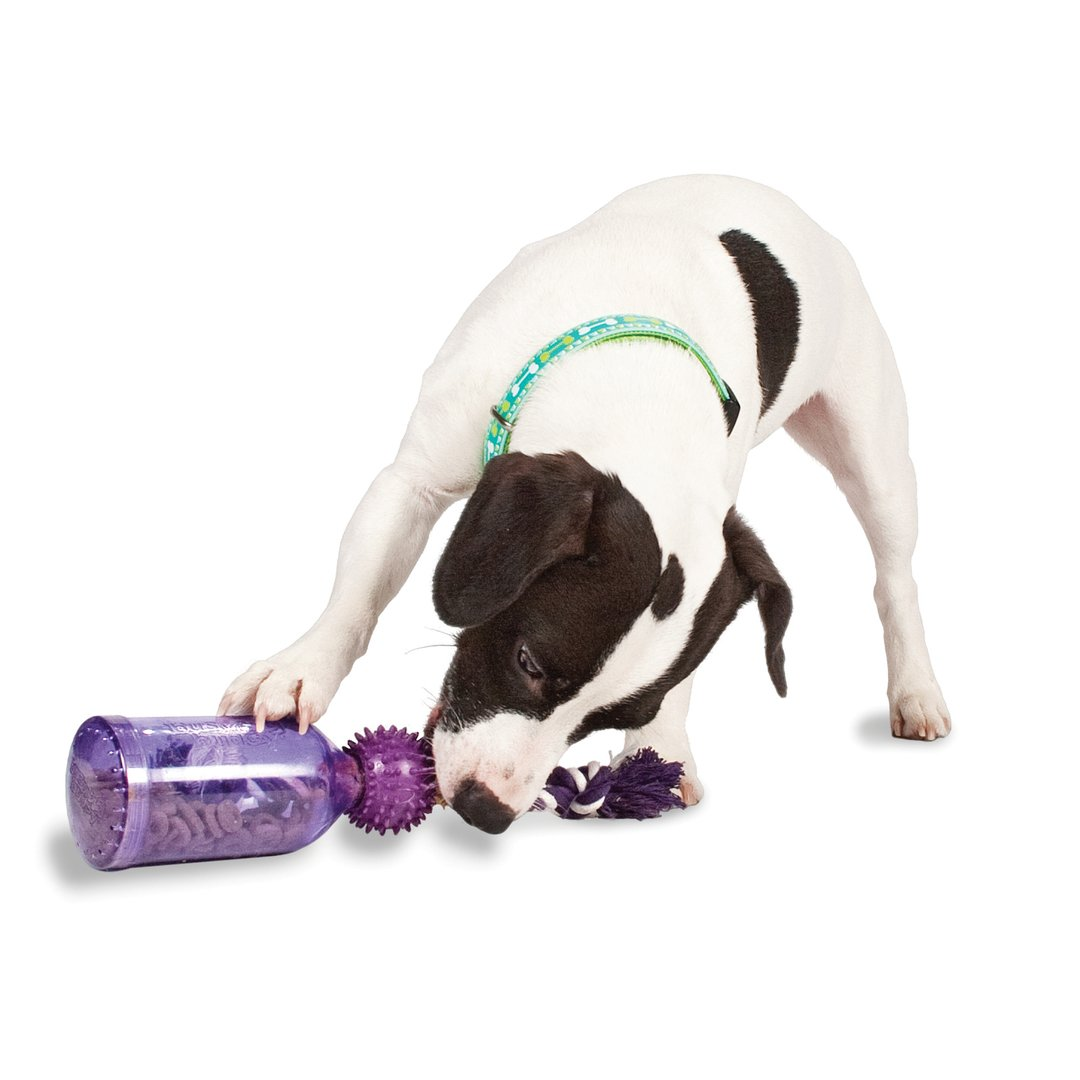 Dog Treat Wireless Toy