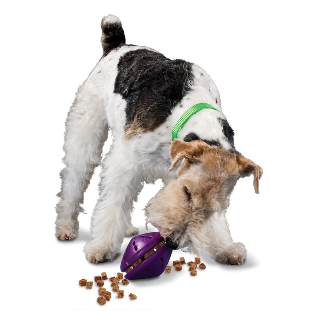 Shop for Busy Buddy® Twist \'n Treat™ by PetSafe - GRP-BB-TNT