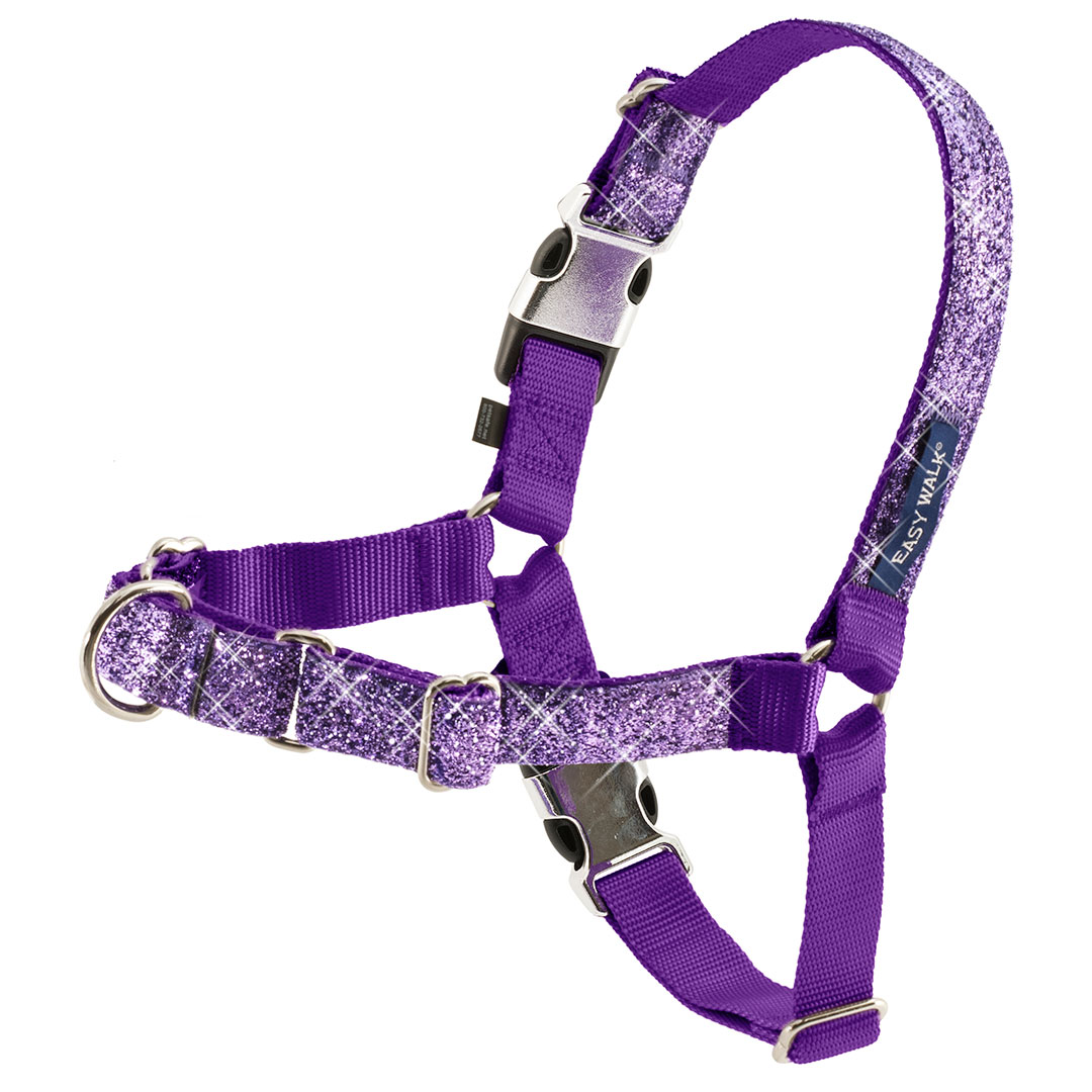 Walk Your Dog With Love Harness