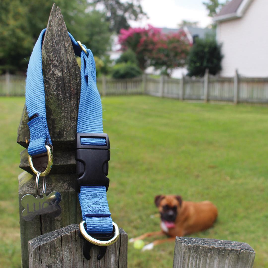 "NEW 14/""-20/"" 1/"" wide Red KeepSafe Break-Away Dog Collar Medium"