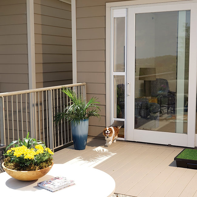 Shop For Sliding Glass Pet Door For Frames Up To 81 By Petsafe