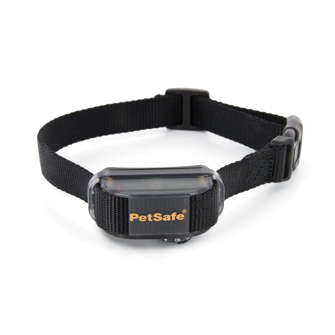 Petsafe Deluxe Little Dog Anti Bark Collar Pbc