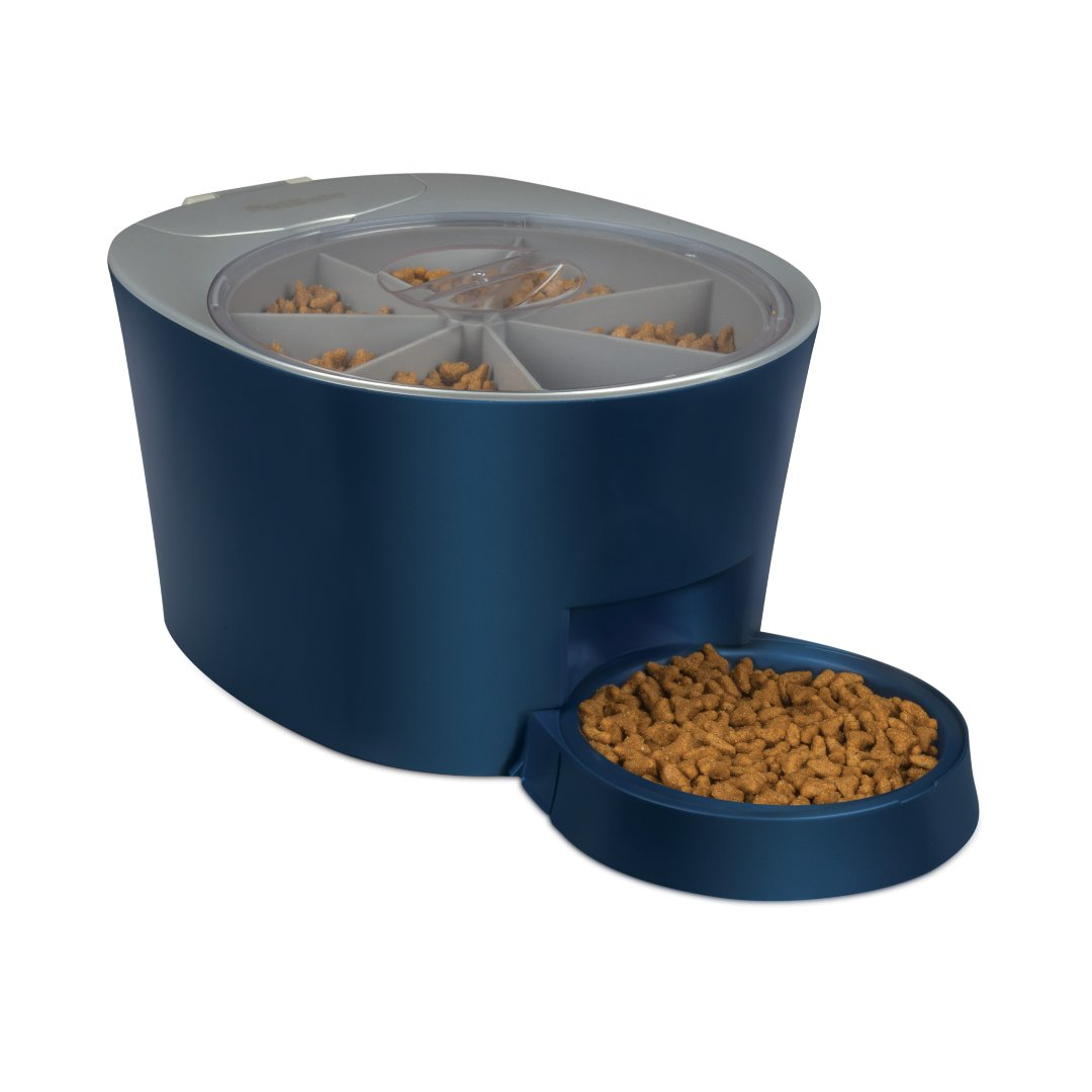 automatic petsafe feeder pet eatwell meal naturalpets