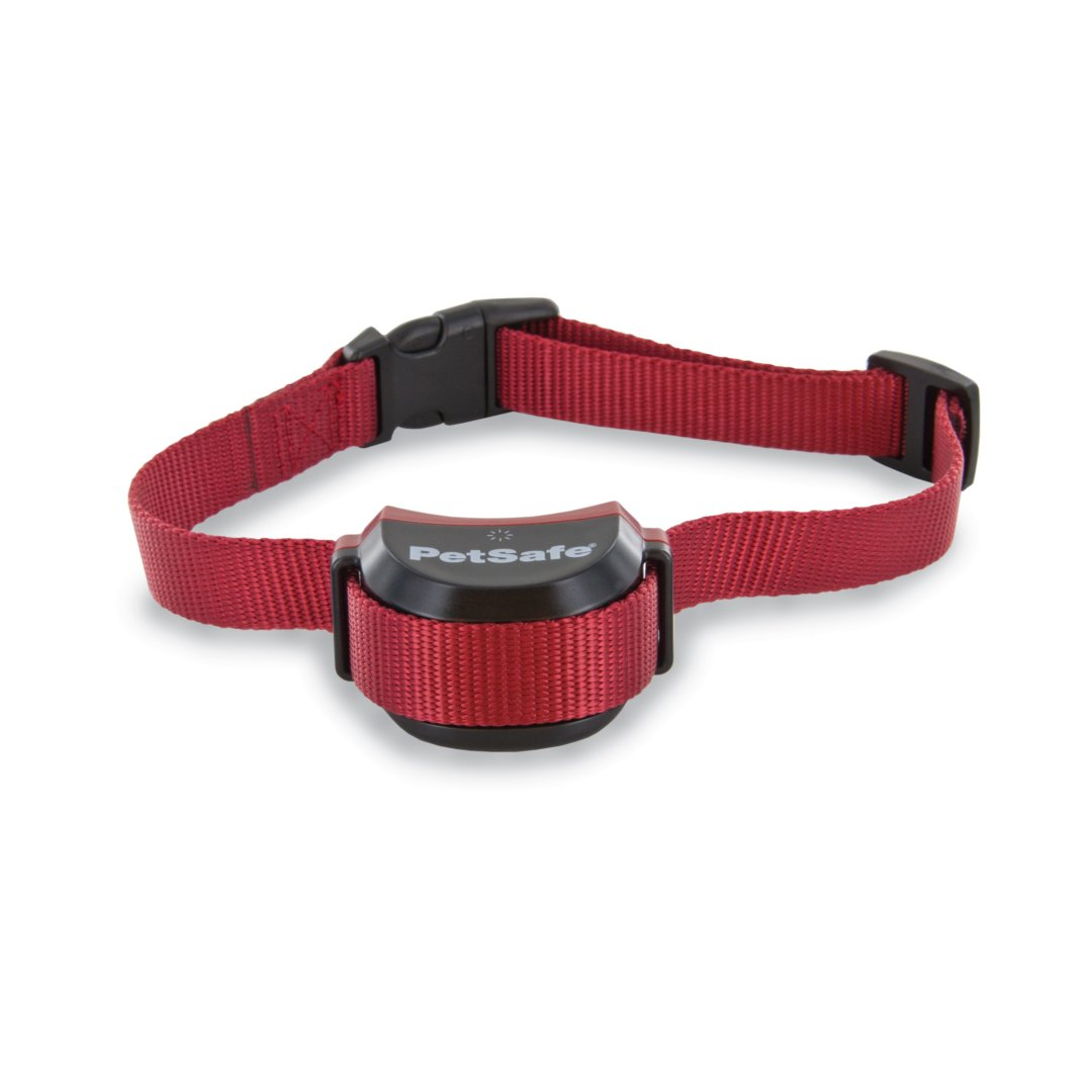 petsafe stubborn dog collar